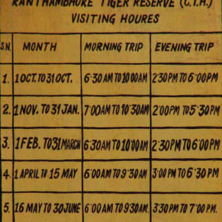 ranthambore-national-park-timings
